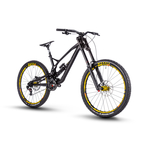 Nukeproof Pulse RS DH Bike